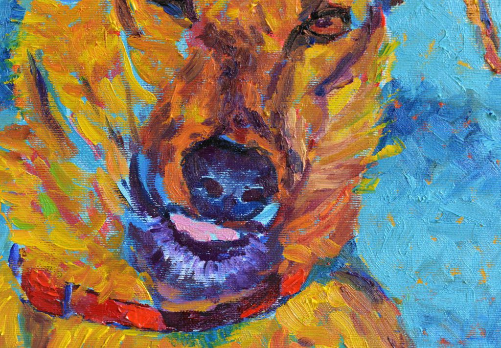 obraz z psem psy do adopcji schronisko malarstwo portret psa
